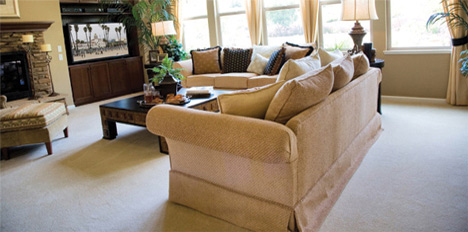 carpet cleaning ipswich qld